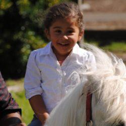 Birthdays at the Bronx Equestrian Center