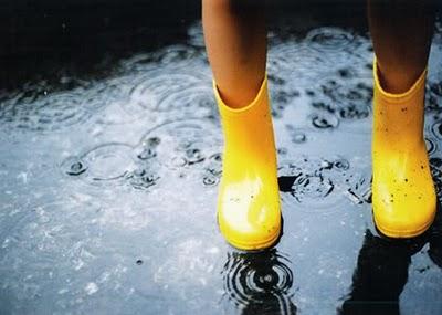 Rainy Day Picks