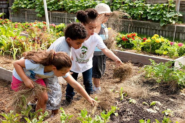 The Children's Gardening Program Gets Festive in Fall!