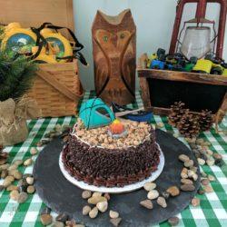 Birthday Idea: Camp Themed Party