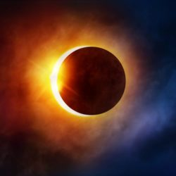 Solar Eclipse Viewing Events in the Bronx