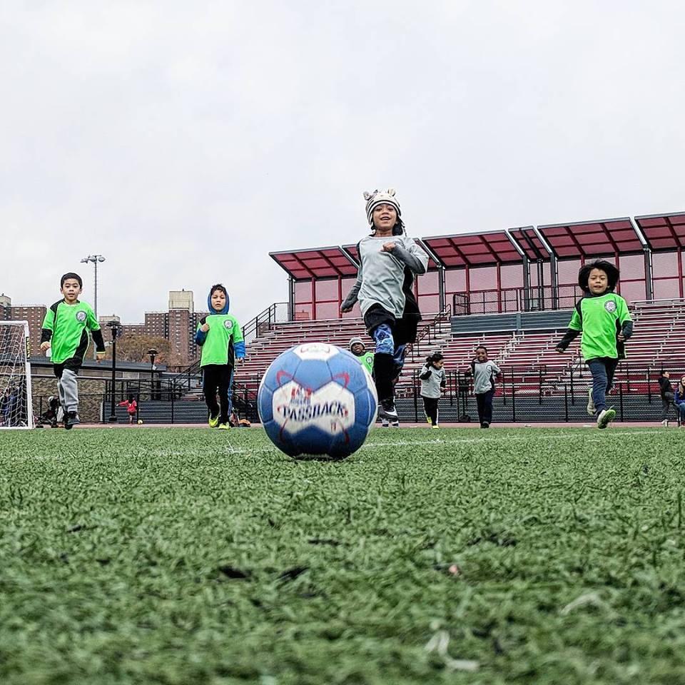 Bronx Sports, Dance, & Arts Program Guide