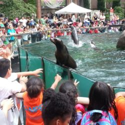 NYC Parks Summer Camp Registration Open