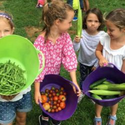 Bartow Pell Mansion Offering Two Summer Camp Options