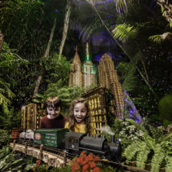 NYBG Holiday Train Show Ticket Giveaway & Discount Code