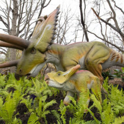 Everything You Need to Know About the Bronx Zoo's Dinosaur Safari