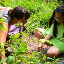 CityParks Learn Environmental Education Programs Registration Now Open for Fall 2019