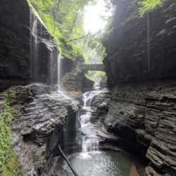 Visiting Watkins Glen in the Finger Lakes