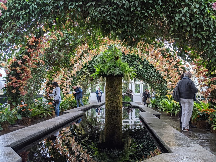 Giveaway Tickets To The Orchid Show At The New York Botanical