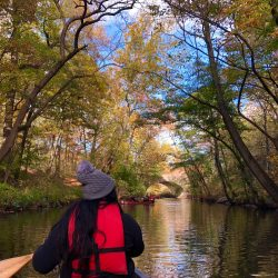 Canoe on the Bronx River in the Amazing Bronx River Flotilla 2020